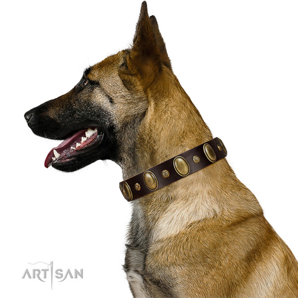 Genuine leather dog collar of soft to touch material with significant studs