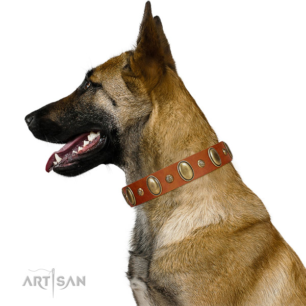 Decorated genuine leather dog collar with rust resistant hardware
