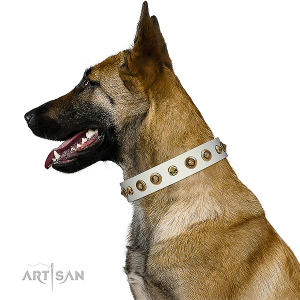 Soft to touch natural leather dog collar with adornments for your canine