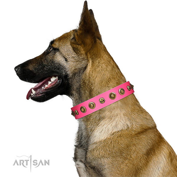 Designer full grain natural leather dog collar with embellishments