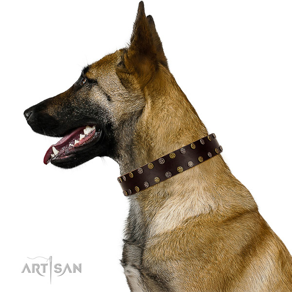 Stylish walking genuine leather dog collar with decorations