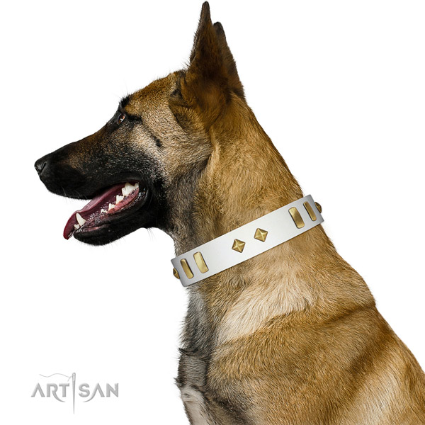 Comfy wearing soft leather dog collar with decorations