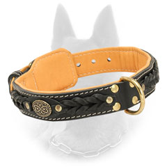 Padded Leather Belgian Malinois Collar With Brass D-Ring for Leash Attachment
