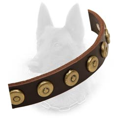 Belgian Malinois Leather Collar Strap with Brass Doted  Circles