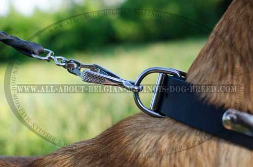 Belgian Malinois Leather Collar with Strong D-Ring for  Reliable Dog Control