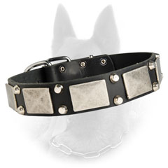 Fantastic Leather Belgian Malinois Dog Collar With  Nickel Plates And 2 Pyramids Between Them