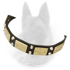 Unusual Design Leather Belgian Malinois Dog Collar With  Nickel Covered Hardware And Brass Plates
