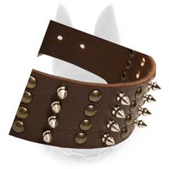 Reliable Leather Belgian Malinois Dog Collar With Brass  Studs And Nickel Spikes