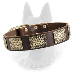 Belgian Malinois Leather Dog Collar Decorated with Embossed Brass Plates
