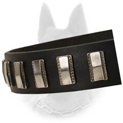 Belgian Malinois Leather Dog Collar Decorated with  Plates