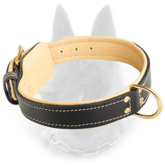 Belgian Malinois Nappa Padded Leather Dog Collar with  Strong D-Ring and Fur Saver Leather Plate