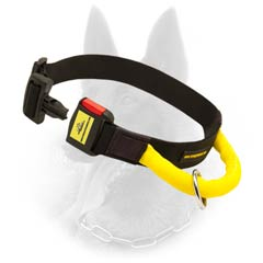 Any Weather Belgian Malinois Nylon Collar With Quick Released Buckle