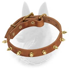 Belgian Malinois Spiked Leather Dog Collar with One Row of Brass Spikes
