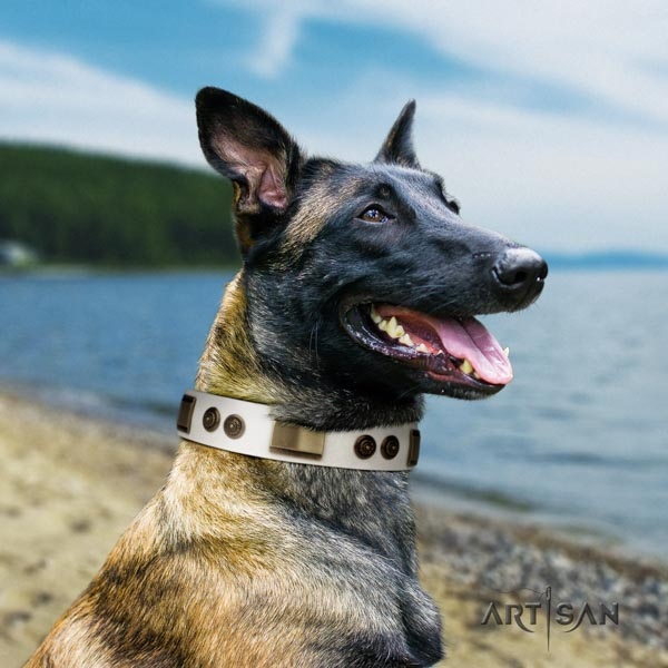 Belgian Malinois fancy walking full grain genuine leather collar for your lovely pet