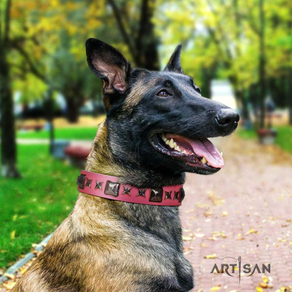 Belgian Malinois fancy walking natural leather collar for your impressive canine