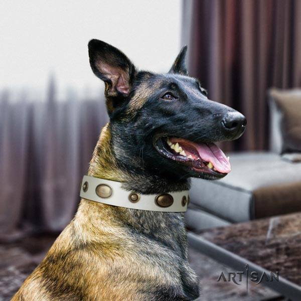 Belgian Malinois stylish walking leather collar for your beautiful four-legged friend