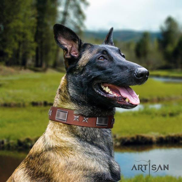 Belgian Malinois everyday walking genuine leather collar for your stylish canine