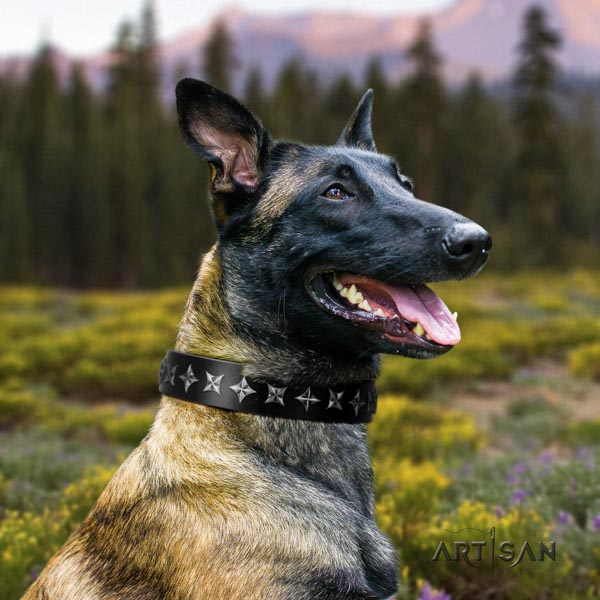 Belgian Malinois daily use full grain natural leather collar for your impressive canine