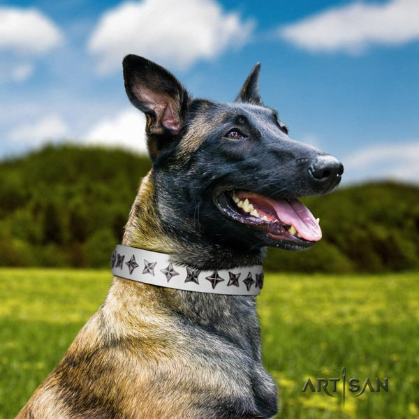 Belgian Malinois easy wearing full grain genuine leather collar for your beautiful doggie
