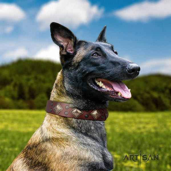 Belgian Malinois basic training natural leather collar for your lovely canine
