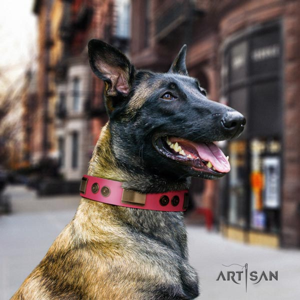 Belgian Malinois walking genuine leather collar for your lovely doggie