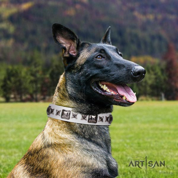 Belgian Malinois everyday walking natural leather collar for your impressive doggie