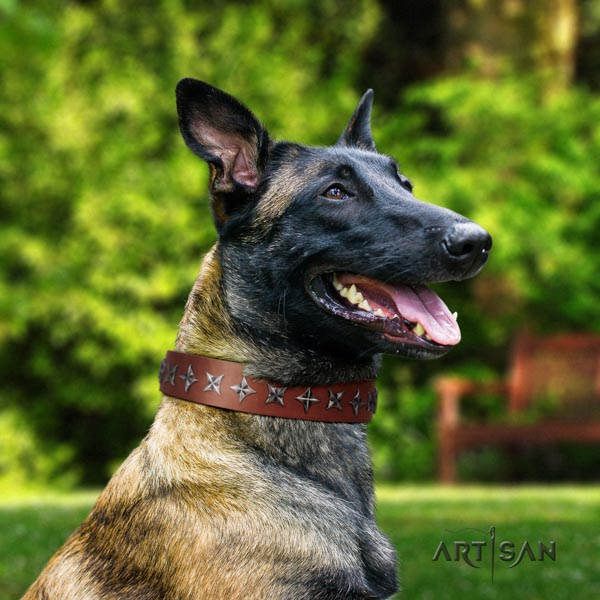 Belgian Malinois everyday use leather collar for your stylish pet