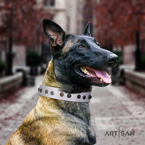 Belgian Malinois daily walking natural leather collar for your lovely canine