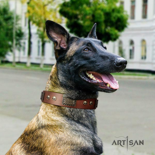 Belgian Malinois handy use natural leather collar for your lovely doggie