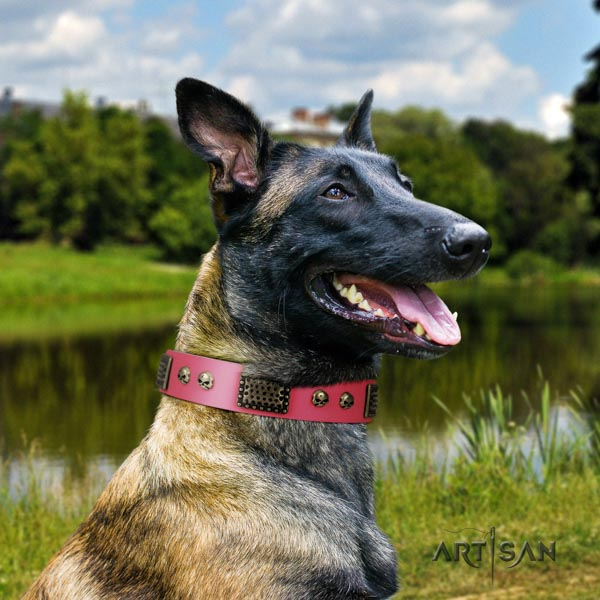 Belgian Malinois everyday walking genuine leather collar for your lovely four-legged friend