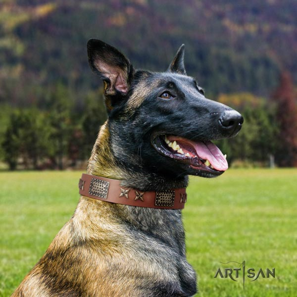 Belgian Malinois everyday use full grain genuine leather collar for your stylish canine