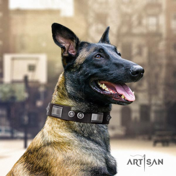 Belgian Malinois easy wearing natural leather collar for your beautiful dog