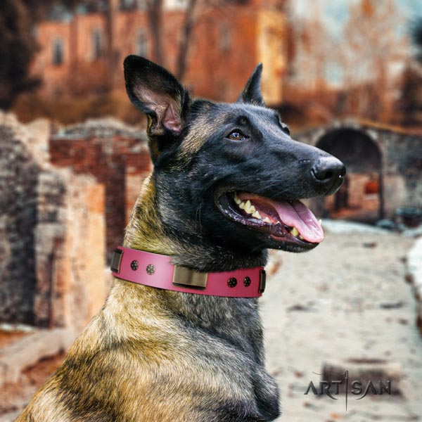 Belgian Malinois fancy walking full grain genuine leather collar for your attractive doggie