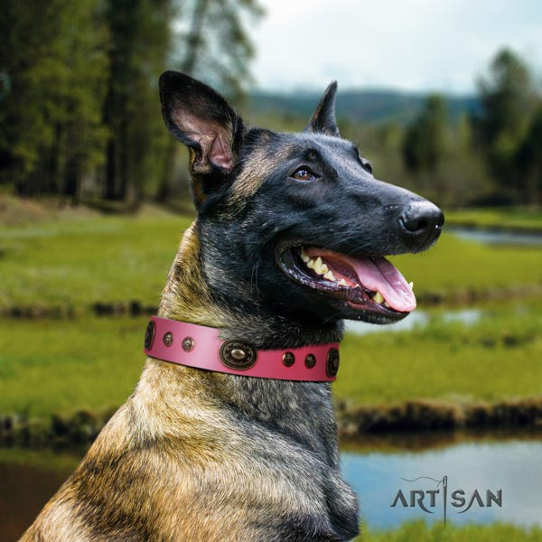 Belgian Malinois basic training leather collar for your attractive doggie