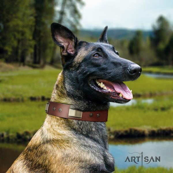 Belgian Malinois daily walking natural leather collar for your handsome four-legged friend