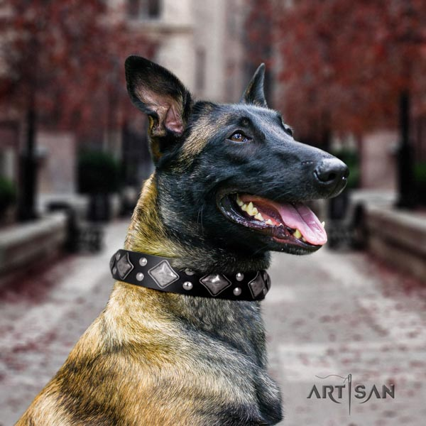 Belgian Malinois basic training leather collar for your beautiful pet