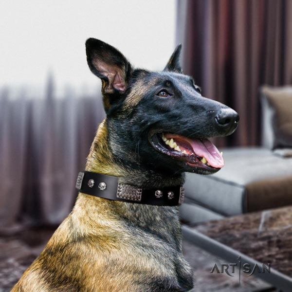 Belgian Malinois fancy walking genuine leather collar for your handsome dog