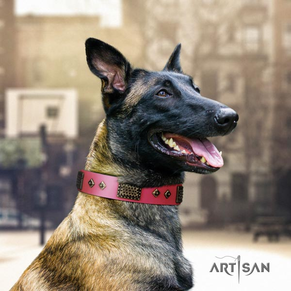 Belgian Malinois walking full grain genuine leather collar for your handsome four-legged friend