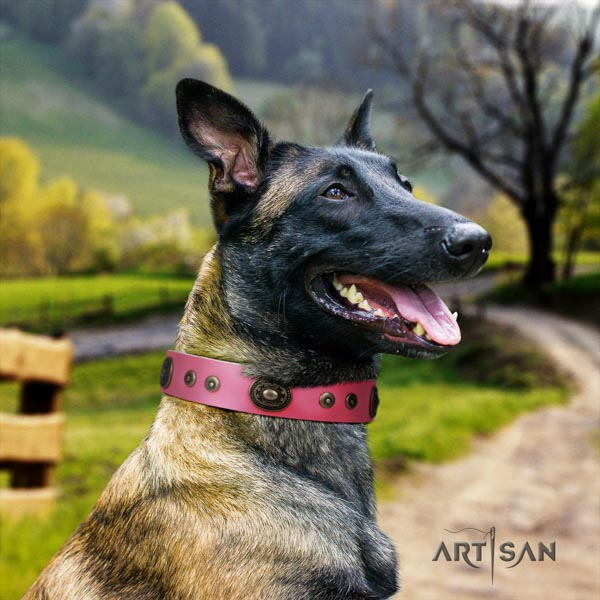 Belgian Malinois everyday walking full grain natural leather collar for your stylish pet