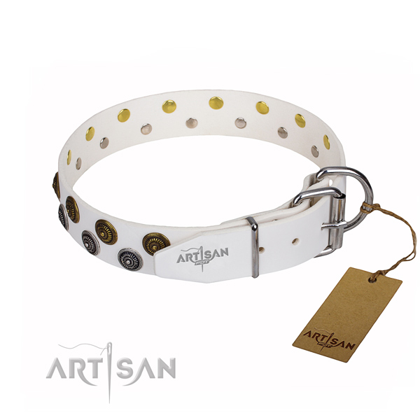 Stylish walking full grain genuine leather collar with adornments for your canine