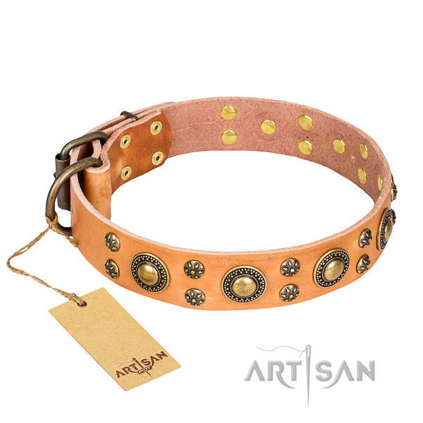 Remarkable leather dog collar for everyday use