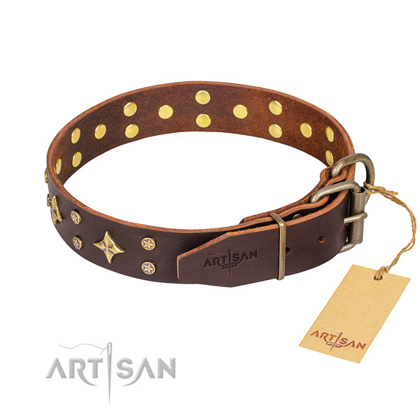 Daily use leather collar with studs for your dog