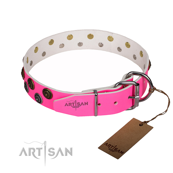 Awesome full grain natural leather dog collar for everyday use