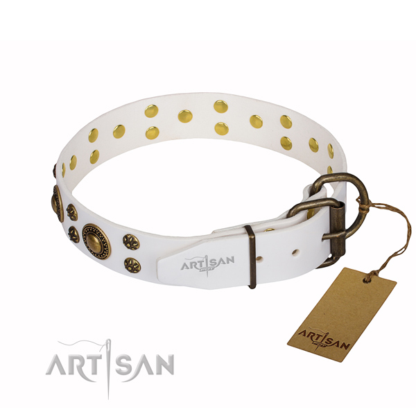 Exceptional natural genuine leather dog collar for everyday walking