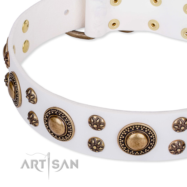 Natural genuine leather dog collar with incredible embellishments
