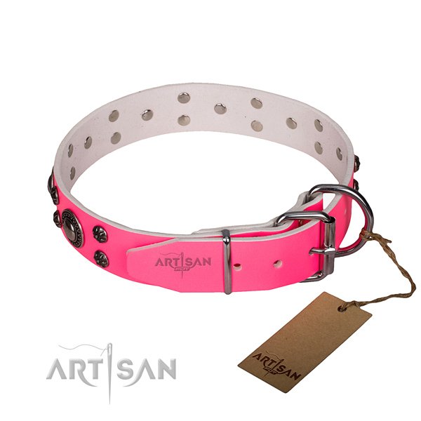 Walking natural genuine leather collar with rust-proof buckle and D-ring