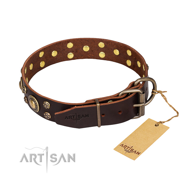 Stylish walking genuine leather collar with adornments for your dog