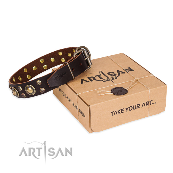 Finest quality natural genuine leather dog collar for stylish walks