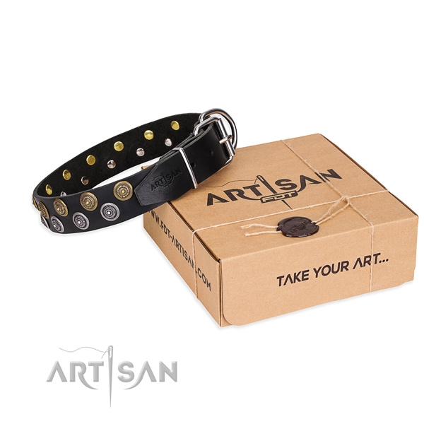 Leather dog collar with embellishments for daily use