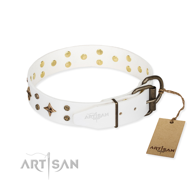 Daily walking full grain leather collar with adornments for your four-legged friend